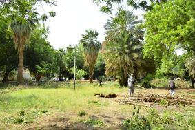 بدء إعادة تأهيل حديقة الشهداء لتفتح أمام الجمهور
